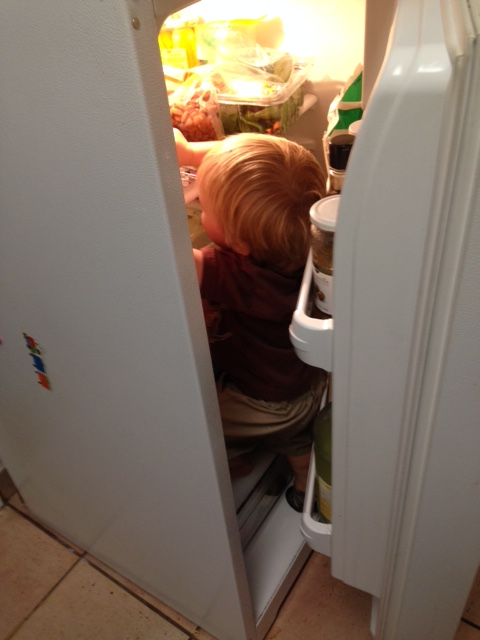 Lost in the Fridge